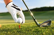 Дачный мини гольф