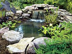Искусственные водоёмы и пруды